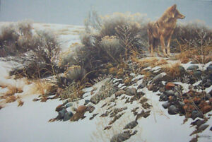 """Coyote in Winter Sage"" s/n  Robert Bateman"