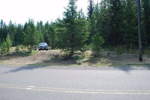Cariboo Acreage  (Owner Financing Available)  80000 OBO