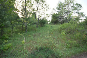 Haliburton Real Estate Team - Minden Area Lot - $39,900 Kawartha Lakes Peterborough Area image 4
