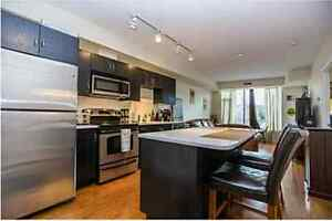 MUST SEE!!! PERFECT Westboro Condo for sale