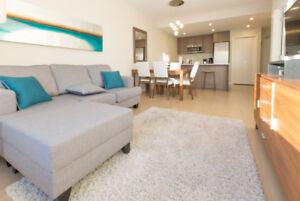 Fabulous Location, Free Parking and Wifi, Walk to Everything