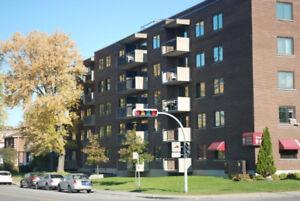 Montréal-Nord 1½ TOUT INCLUS (secteur ouest)