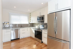 Brand new all in 4 beds, 2 baths close to transit and algonquin