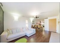 Amazing one bedroom flat in Islington, ideal location - 2 minute walk from Angel Station!