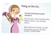 Polly on the go.. domestic cleaning to a good standard!