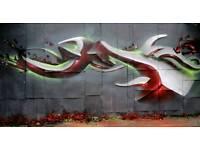 Graffiti artist/Airbrush/Mural/Shop sign,shutters,workshops and more..