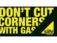 GAS SAFE Heating & Plumbing engineer, boilers,cooker,gas fires repair,installation