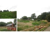 GRAZING LAND | Large Area | APPROXIMATELY TWO ACRES | Low Rent | Horsley Road, Ovingham | C1029