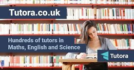 Frome Tutors from £15/hr - Maths,English,Science,Biology,Chemistry,Physics,French,Spanish