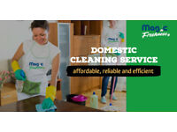 We provide Domestic Cleaning and Ironing Services