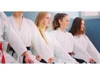 Beginners Karate Course for Teenagers (13-17)
