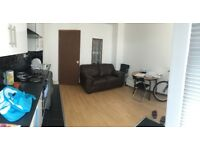 LARGE NEWLY REFURBISHED ONE BED FLAT - AVAILABLE 30.7.18