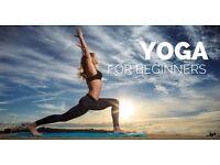 Beginners Yoga Classes in Kirkcaldy