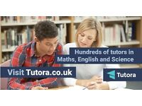 Private Tutors in Glastonbury from £15/hr - Maths,English,Biology,Chemistry,Physics,French,Spanish