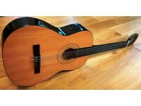 Electro-Acoustic Classical Burswood Guitar Full Size with Case