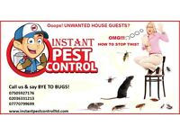100% Guaranteed Pest Control (Mice, Rat, Cockroach, Bedbugs, Wasps, Spiders,Ants,Fleas,Moth)