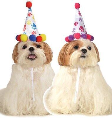 Groß Kleintier Haustier Hund Katze Geburtstag Pawty Party Hut Kostüm - Großer Hunde Kostüm