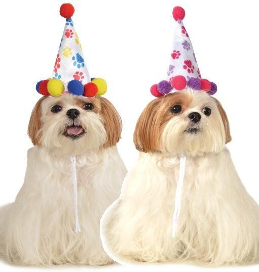 Animal Pet Dog Cat Birthday Party Hat Fancy Dress Costume Outfit