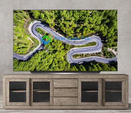 """LG 65"""" Class OLED C9PUA Series 2160p Smart 4K UHD TV with HDR OLED65C9PUA"""