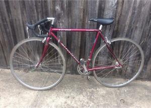 Shogun Katana Road Bike
