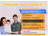 Earn 100% commissions promoting internet business services