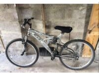 Raleigh Adult bikes