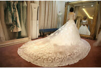 Stunning Long Train Wedding Dress