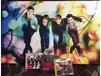 """Big Time Rush [BTR] Album Bundle with 35"""" Canvas [All items in Immaculate Condition]"""