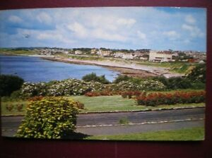 POSTCARD-CORNWALL-FALMOUTH-GYLLNGVASE-BEACH-FROM-CASTLE-DRIVE-1960S
