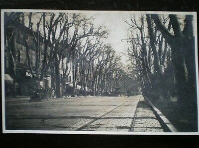POSTCARD - RP LOVELY WOODED AVENUE