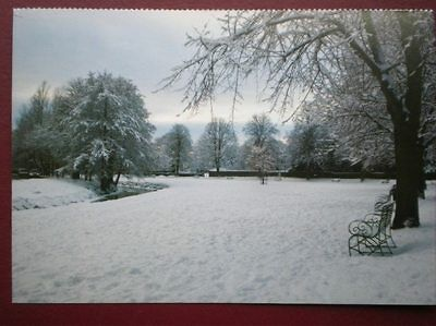 POSTCARD G1-9 DURHAM GREAT AYTON - IN THE SNOW