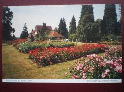 POSTCARD A3-6 HERTFORDSHIRE ROSE GARDENES AT CHISWELL GREEN