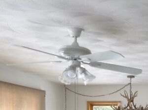 """48"""" White ceiling Fan and light with reversible blades"""