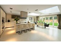 Professional cleaner home and office