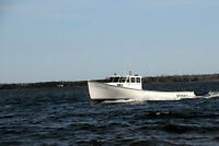"45"" lobster fishing boat"
