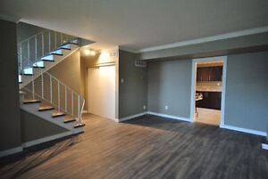 Beautifully renovated 3 bed home in Windsor Park