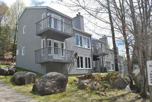 Great condo located just minutes from Tremblant ski slopes!