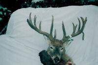 saskatchewan whitetail hunts for canadian residents