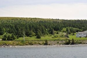 Oceanfront Property for Sale - Hr. Grace South, NL. St. John's Newfoundland image 6