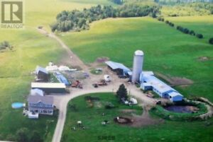 Dairy farm, approx. 223 acres, used as a B&B, in-floor heat