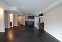 Brand New Apartment/Basement For Rent
