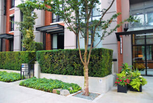 SOLD in DOWNTOWN VANCOUVER WITH PROPERTYGUYS.COM!!!