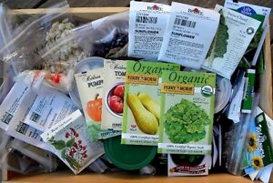 Looking to buy garden equipment and seeds