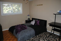 STUDENT RENTAL -  NEW PRICE!!  3 BEDROOMS ALL INCLUSIVE