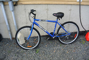 Blue SuperCycle SG 1800