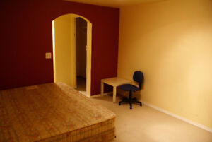 Basement Room with Private Bath in NW Edgemont