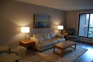 1 BR Fully Furnished Executive Apartment - April 1, '17