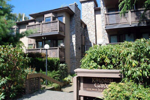 Location! Lovely Furnished Condo for Rent in Kitsilano #674