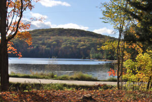 Lake View Cottage for Rent in Bancroft