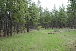 ISO: vacant land within 20 minutes of Red Deer